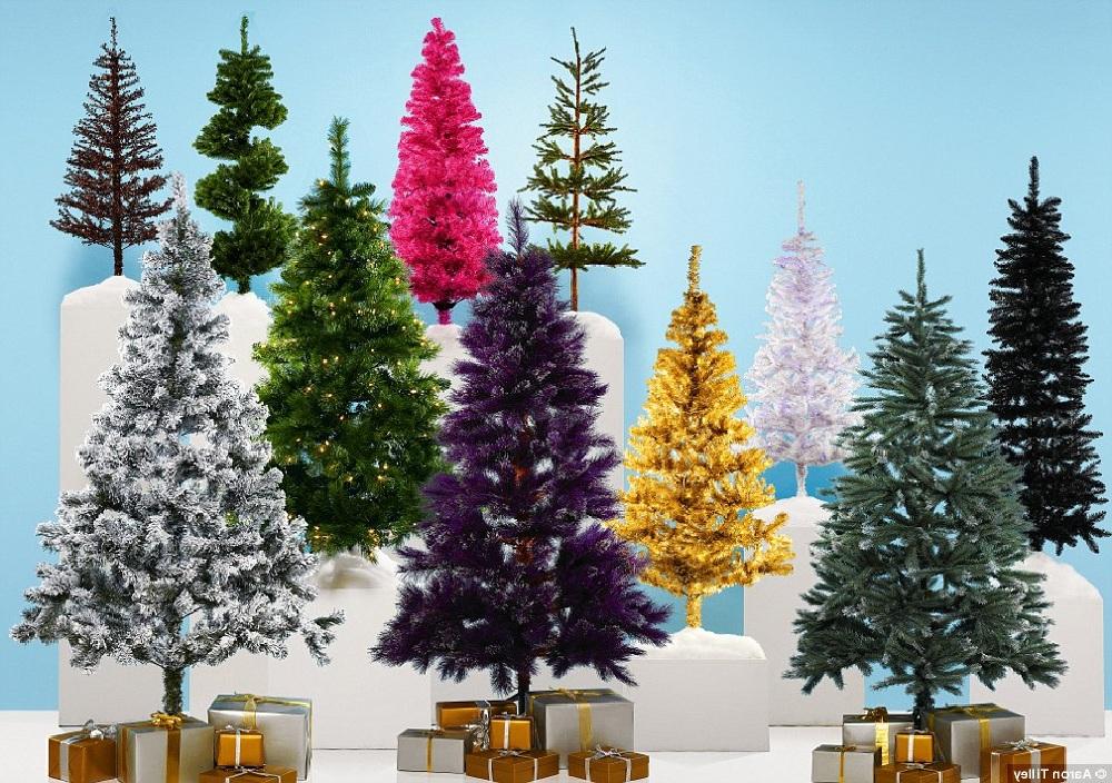 7 самых распространённых ошибок при выборе новогодней ёлки