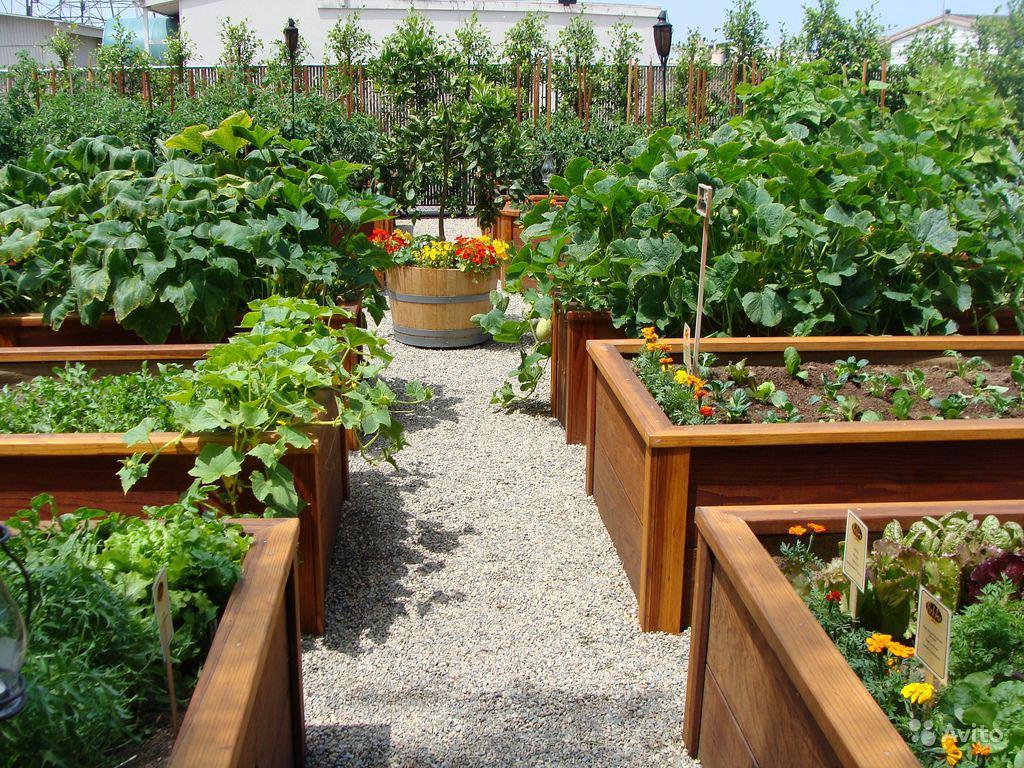 Идеи для сада и огорода своими руками фото