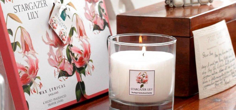 Запах дома: чем должно пахнуть уютное жилище