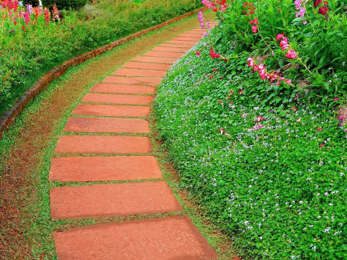 Ландшафт в цветах: оранжевый, темно-зеленый, бежевый. Ландшафт в стиле классика.