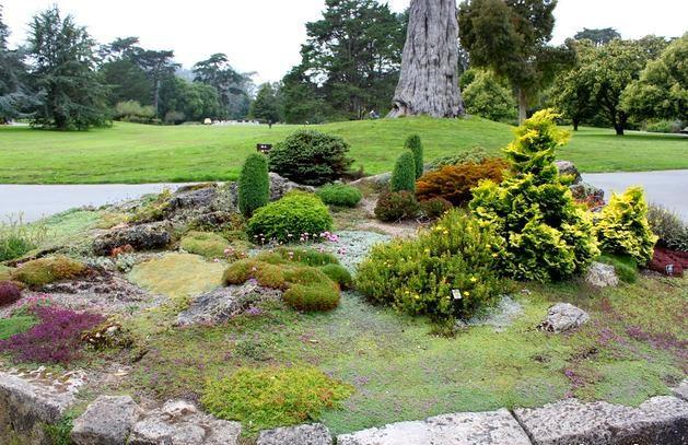 Ландшафт в цветах: серый, светло-серый, темно-зеленый, бежевый. Ландшафт в стилях: экологический стиль.