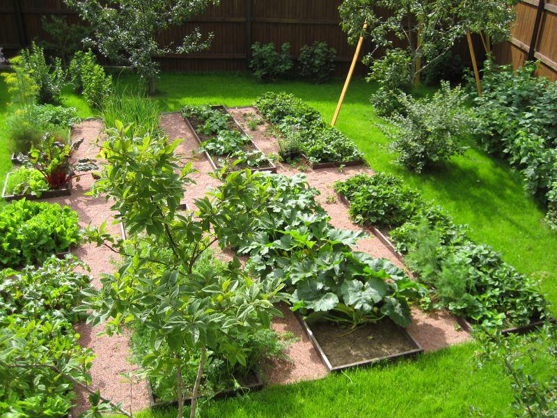 огород своими руками фото с описанием
