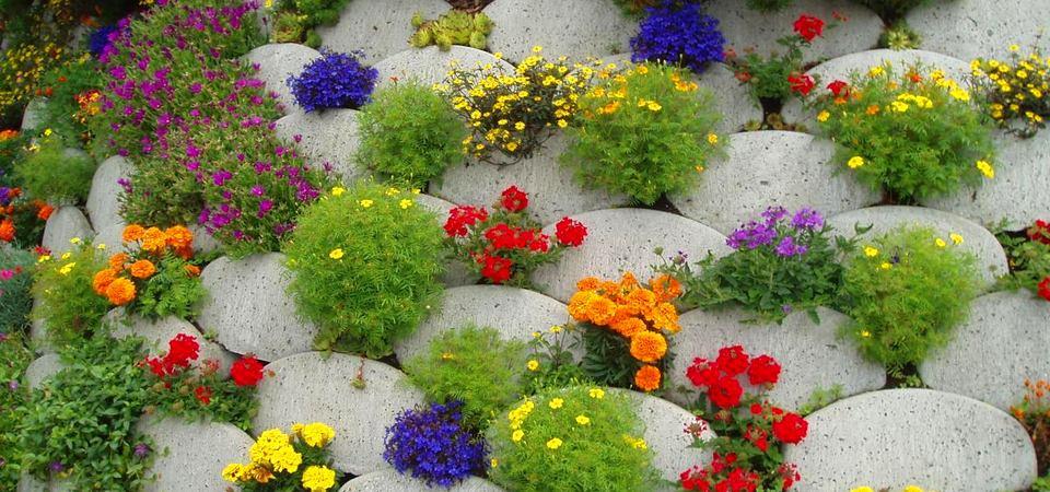 20 самых красивых весенних клумб