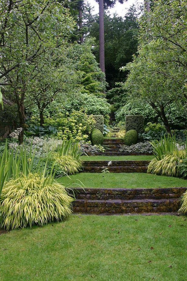 Сад и участок в  цветах:   Бежевый, Зеленый, Серый, Темно-зеленый, Черный.  Сад и участок в  .