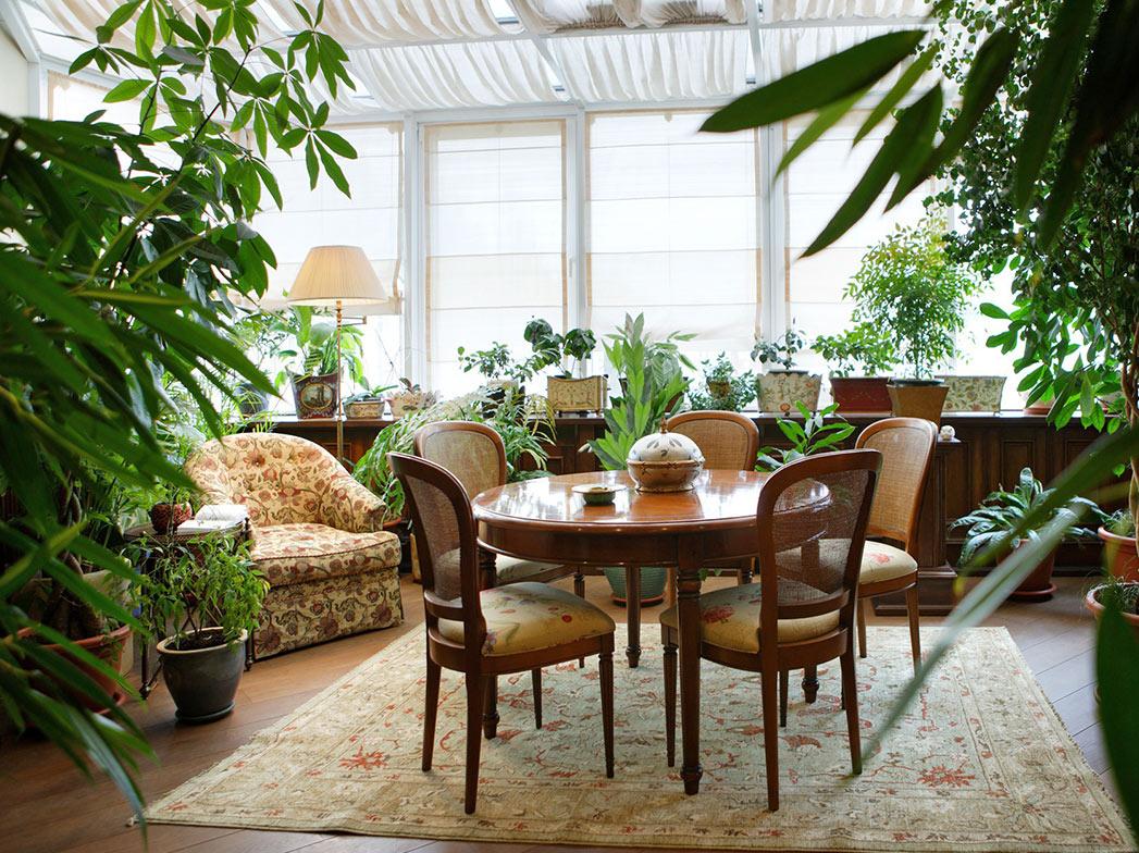 Комнатные растения в интерьере: зимний сад, фитостены и кое-что ещё