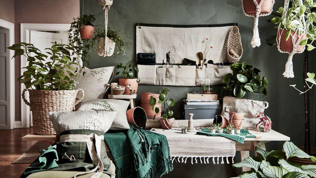 Компания ИКЕА выпустила коллекцию для домашнего садоводства