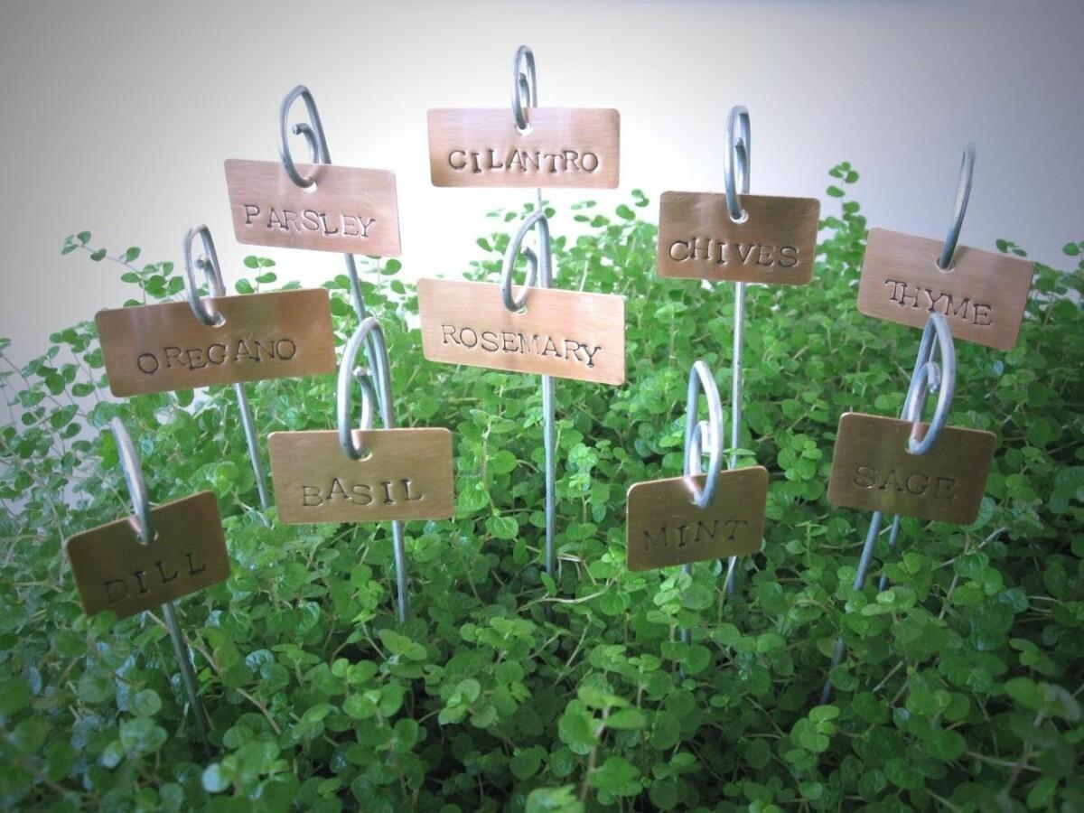 Как маркировать растения в саду: 17 творческих способов